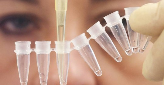 DNA Testing for Maternity and Paternity