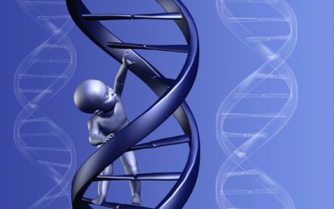 74 genes linked to education level, but effect is minimal