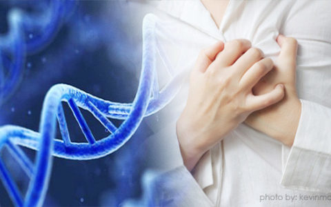 Rare mutation may protect against heart disease