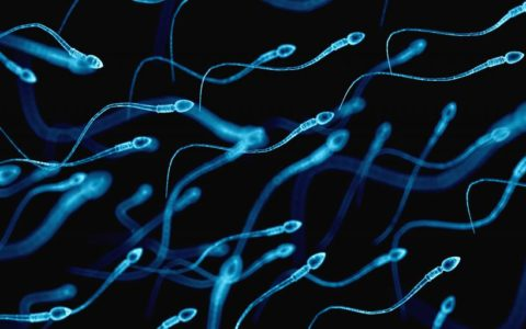 Taurine deficiency in sperm causes male infertility