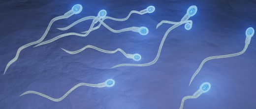 Woman can use donor sperm in IVF without estranged husband's consent, court rules
